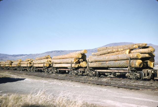Oregon California Eastern Railroad Log Cars